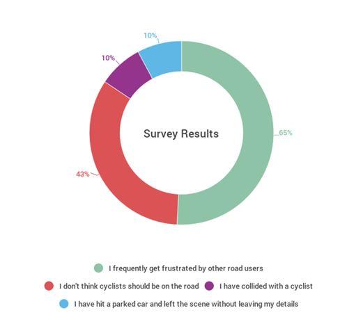 dash cams survey