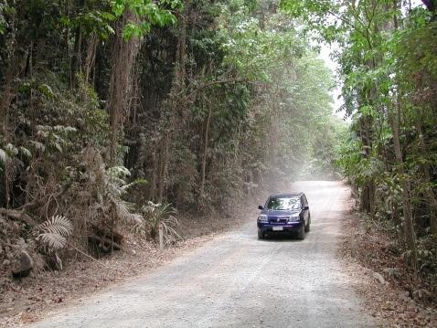 RainforestWay