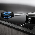 Duo Fusion Cooktop by Asko