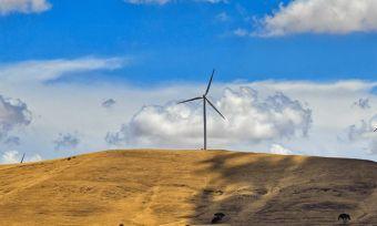 Compressed-South-Australia-Electricity-Compare