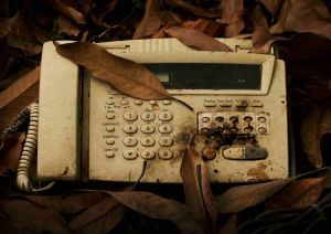 old fax machine under leaves