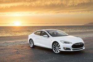 Tesla on the beach
