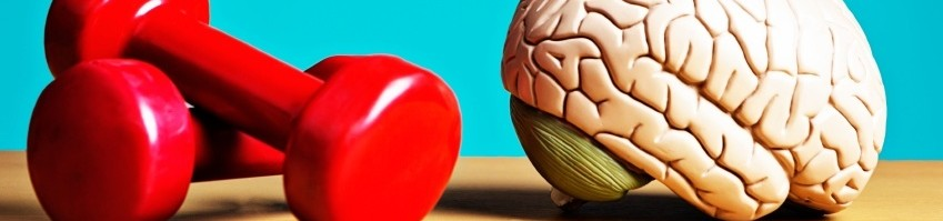 brain excercise banner