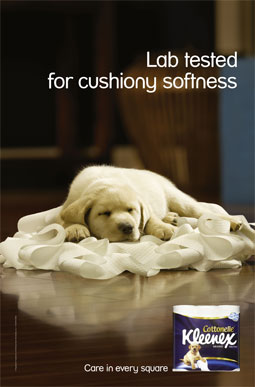 Cute Toilet Paper Ads To Brighten Your Day